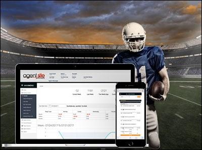 Payperhead sportsbook software image